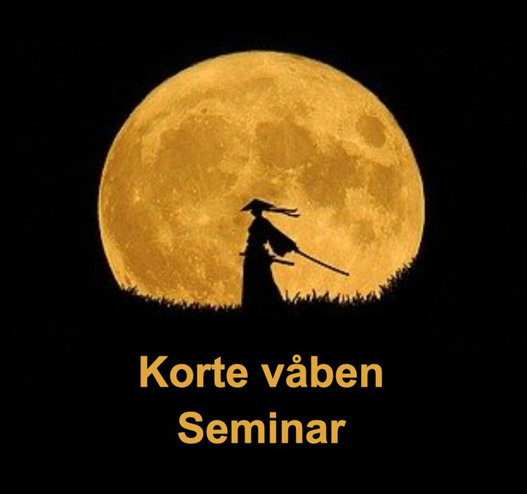 Korte våben seminar i Ribe med Michael Iversen