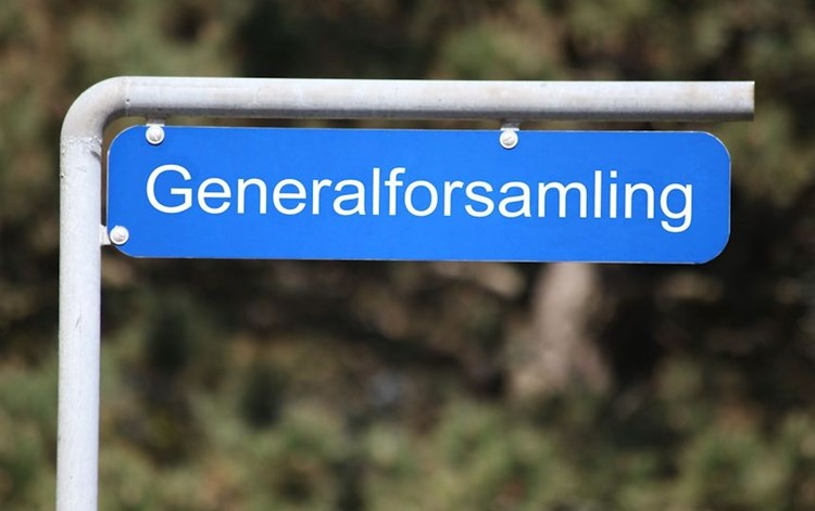 Generalforsamling 2020 og afterski
