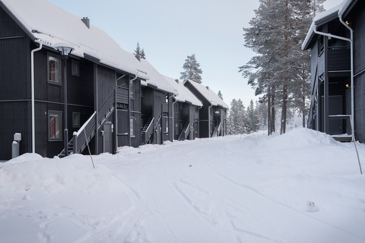 Lindvallen i Sälen, Sverige, Uge 3, 2021