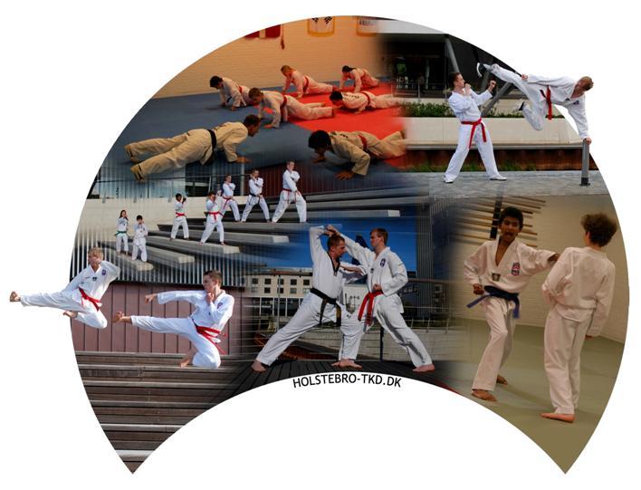 Taekwondo er for alle - uanset køn og alder